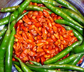 Fabulous Mexican Chilies